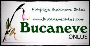Logo bucaneve